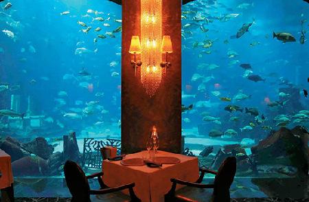 迪拜海底餐厅 沉没在海底的饕餮盛宴