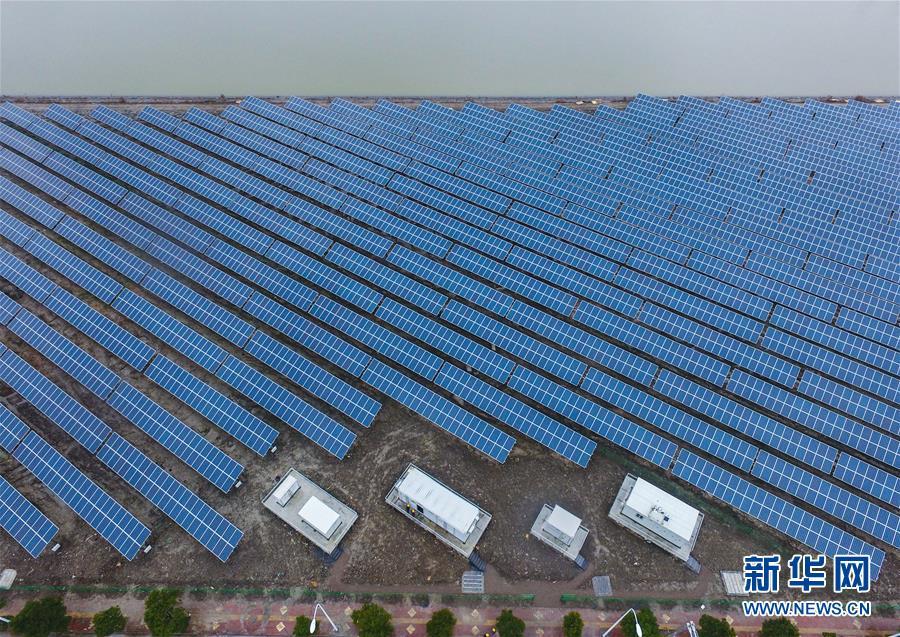 浙江慈溪:鹽鹼地上建起光伏電站