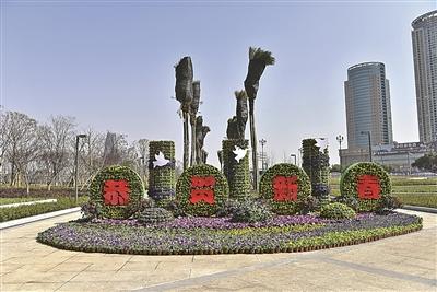 45万盆鲜花装扮甬城春节