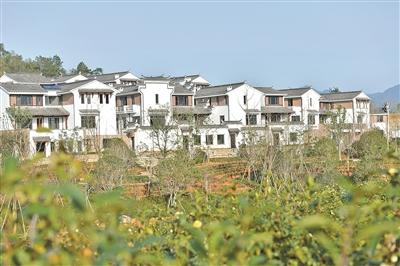 胥江村:村在景中 景在村中