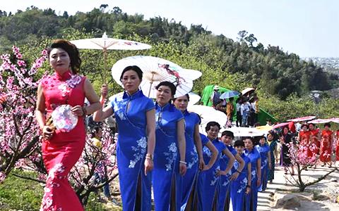 温州平阳迎来桃花文化旅游节 一袭旗袍争艳百亩桃花