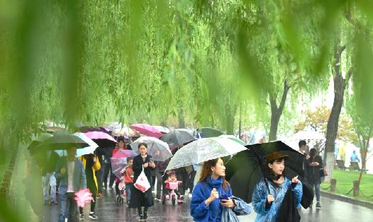 杭州:清明时节雨纷纷 西湖游客雨中游