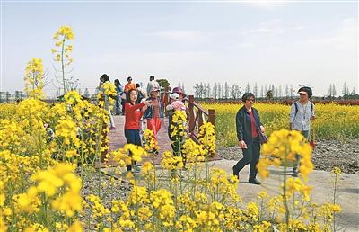 短途游持续发力催热江北旅游市场