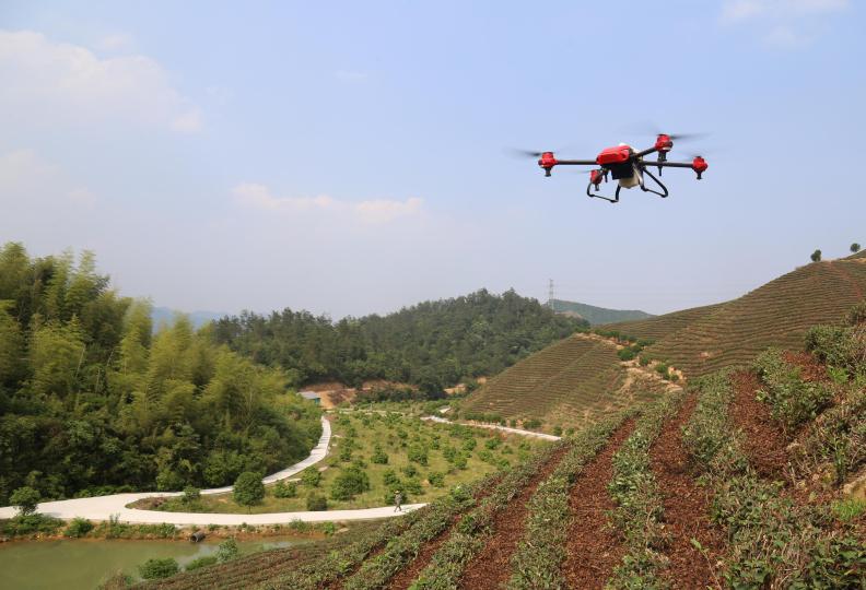 吴兴:无人机喷药 提高效率省成本