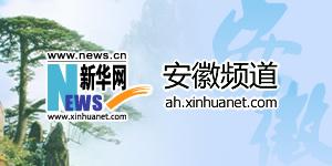 新華網安徽分公司