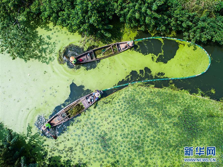 浙江湖州:乡村河道清理忙