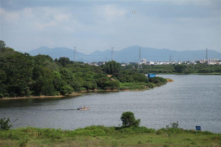 台州密织防溺安全网 溺亡人数大幅下降