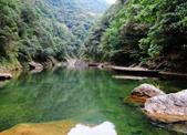 深山小镇变身康养胜地 文成铜铃山镇挖掘山区资源,发展森林旅游产业