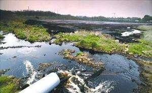 浙江首例生态环境损害赔偿案落槌 环境最可贵 损害必担责