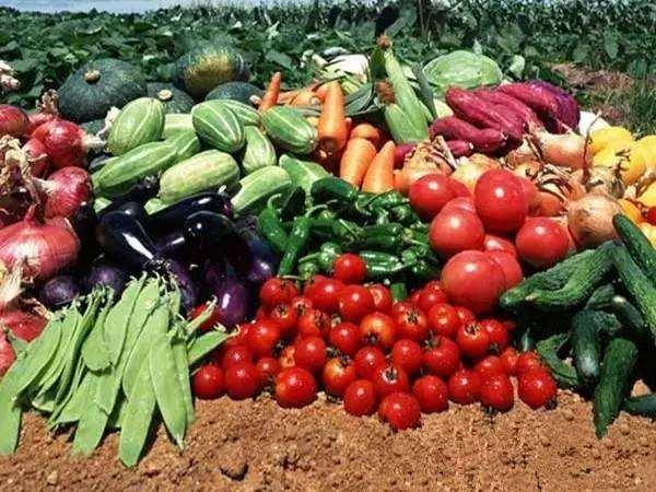 长三角农产品产销联盟成立 搭建合作平台 促进产销对接
