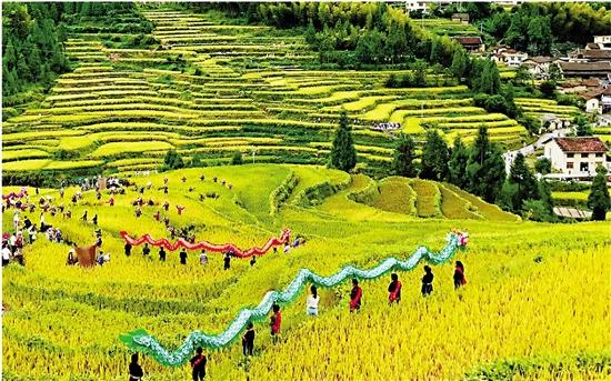 为丰收喝彩 为劳动点赞 浙江各地农民以各种形式欢庆节日