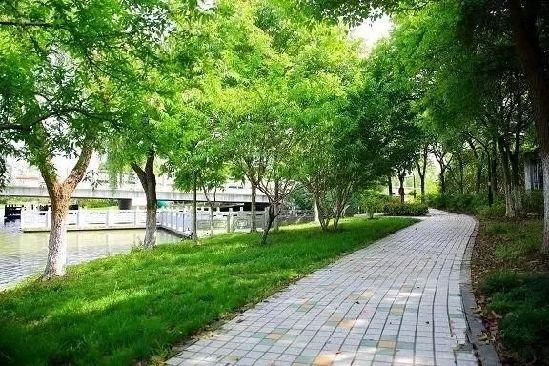 """浙江公布第二批""""最美绿道"""" 全省已建成各类绿道5500公里"""