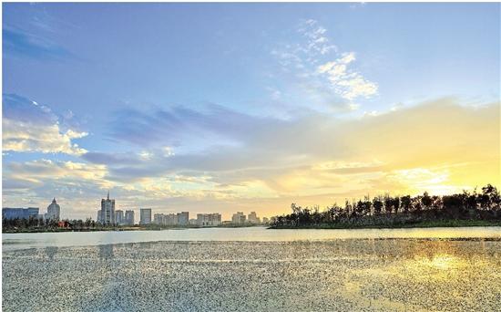 桐乡凤凰湖10年治理启示生态活水来 美丽河湖现