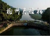 2018杭州马拉松开跑 42.195公里赛道沿途有演出
