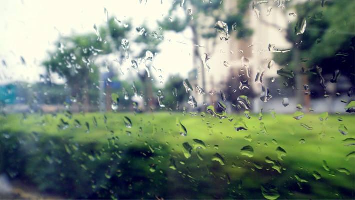 """知否知否,杭城下周依然""""雨肥晴瘦"""""""
