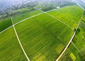 杭州启动实施全域土地综合整治