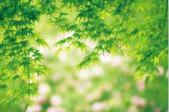 浙江省公布首批清新空气示范区 来这里深呼吸
