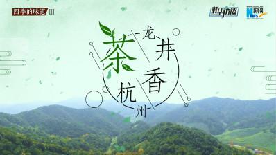 龙井茶香杭州