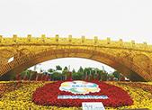 宁波大港大桥闪耀亚洲文明对话大会