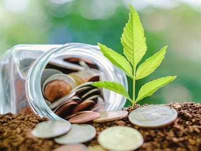 绿色金融政策体系构建打出组合拳