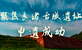 聚焦良渚古城遺址申遺成功