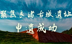 聚焦(jiao)良渚古城遺(yi)址(zhi)申(shen)遺(yi)成(cheng)功