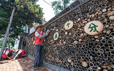 浙江长兴:提升乡村人居环境 增强百姓幸福感