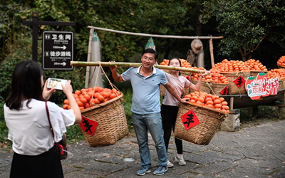 杭州:诗意西溪引客来