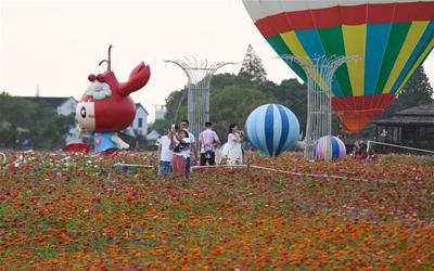 浙江湖州:乡村花海引客来