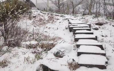 下!雪!啦!一觉醒来,浙江这些地方白茫茫一片