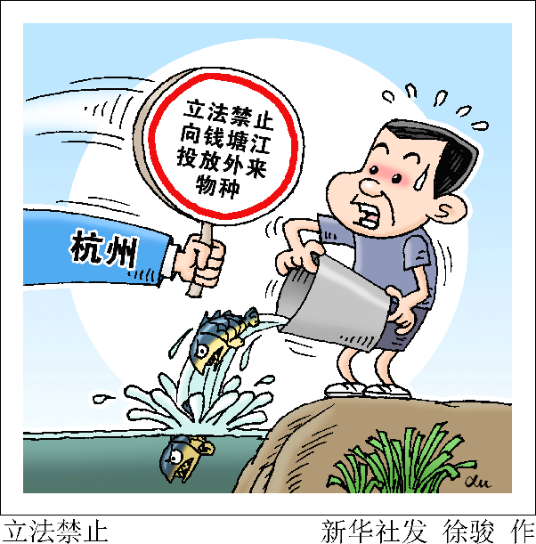 【保護生態共建和諧】杭州立法禁止向錢塘江投放外來物種