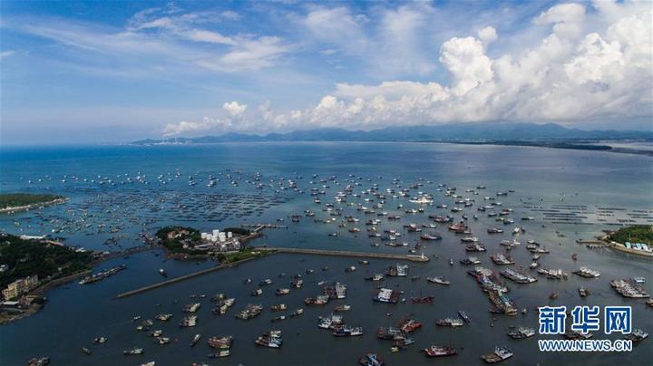 【海洋可持續】漁民自發倡議呼吁,我國試行公海自主休漁