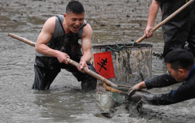 """杭州西溪濕地:""""幹塘""""捕魚"""