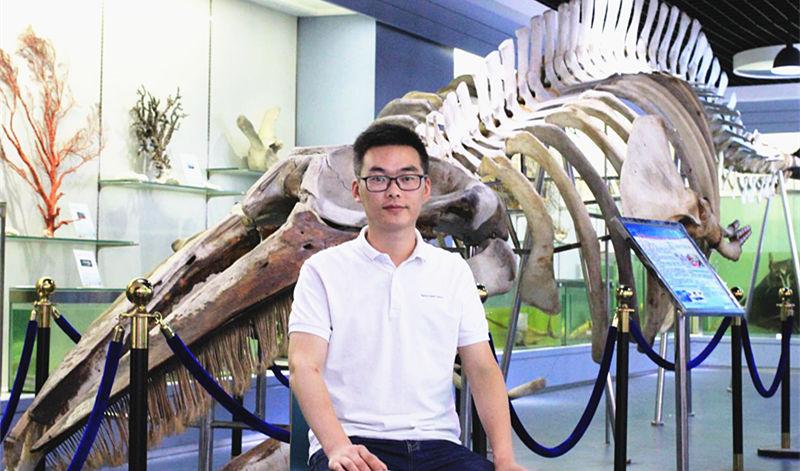 陈健:解析鲸豚多次搁浅浙江沿海原因及救援要求